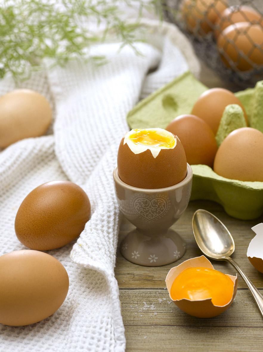 Journée Mondiale de l'Oeuf le 10 octobre 2014 : la filière offre 500 000 œufs aux plus démunis