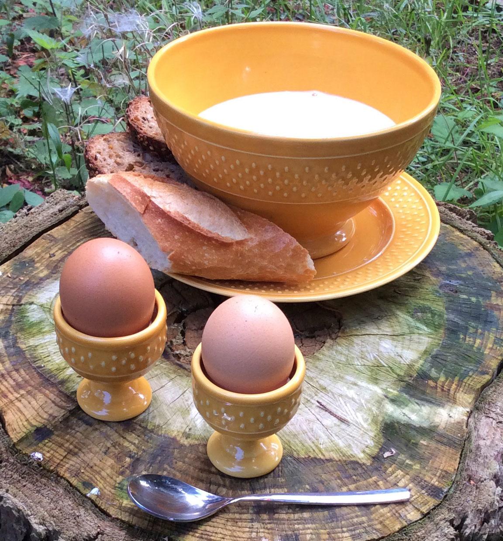 Bon à Savoir : l'œuf un aliment majeur
