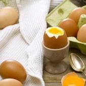Fan d'œufs ?