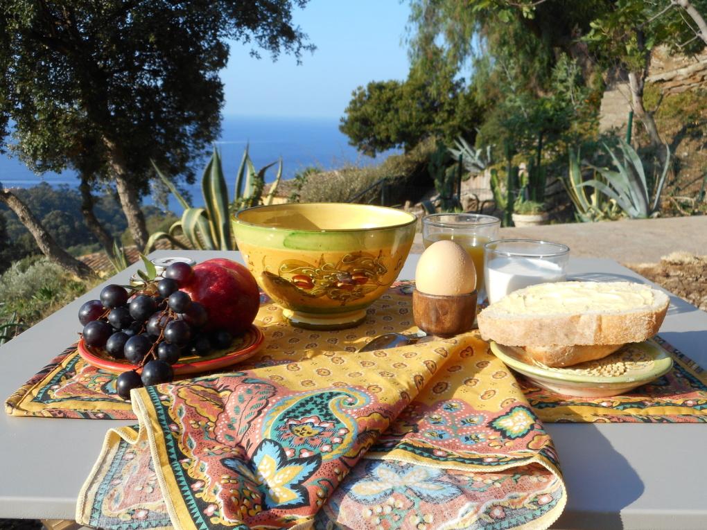 Le petit déjeuner à la mer et le petit déjeuner en forêt !